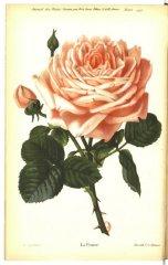 la-france-jdr-1879-3
