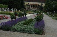 2-baden-rozarium