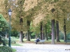 park-obok-rosarium-wilfried