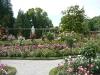 fotmalny-ogrod-rozany-w-stylu-wloskim3.jpg