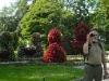 i-kaczki-z-kwiatow.jpg