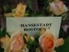 hansestadt-rostock